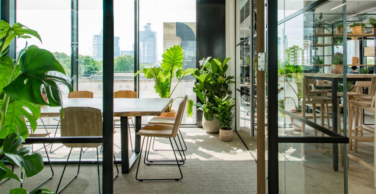 Trang trí cây xanh trong văn phòng mang lại nhiều lợi ích nổi bật